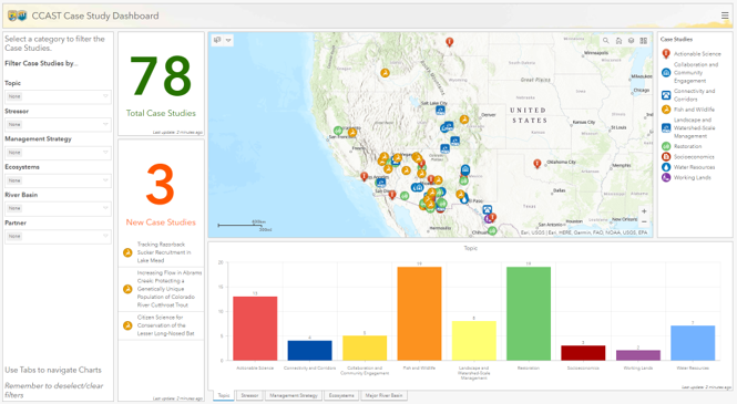Screen shot of case study dashboard
